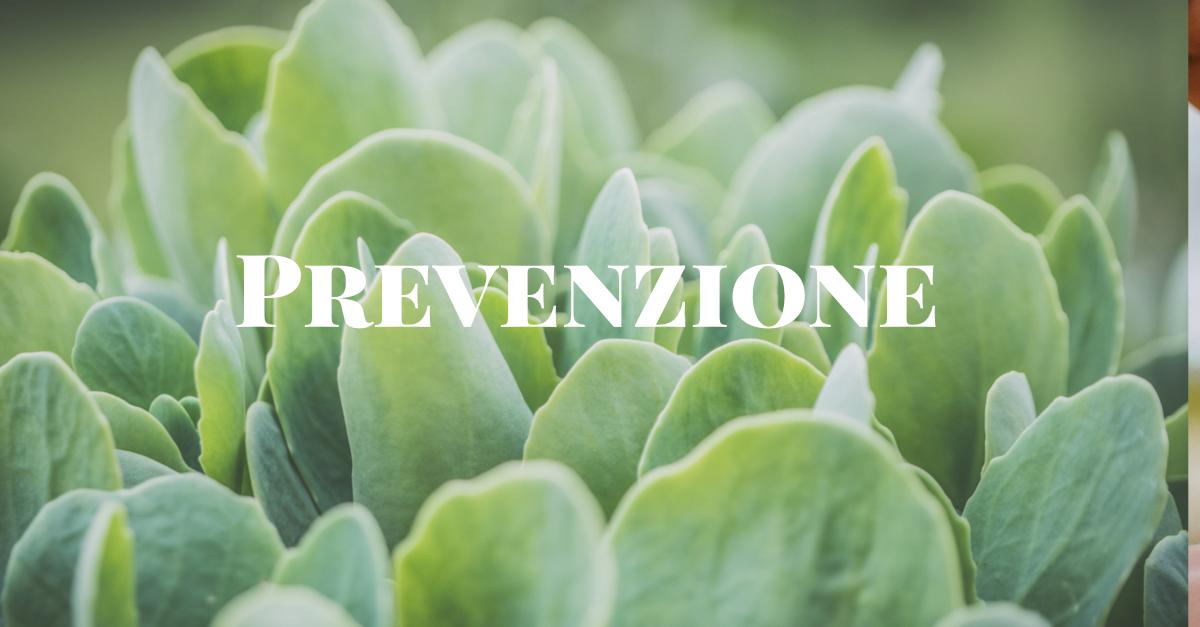prevenzione e agopuntura